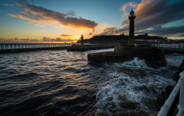 Whitby seagull sunrise