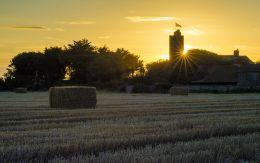 Sunrise tower