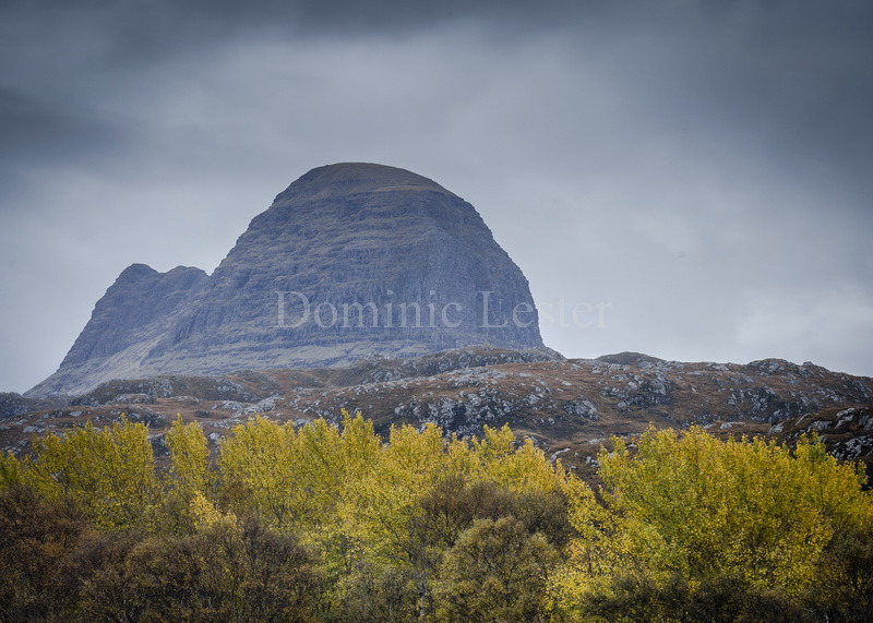 Suilven yellow