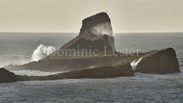 Worms head waves