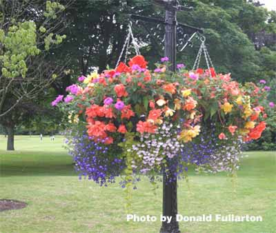Gleneagles flower post