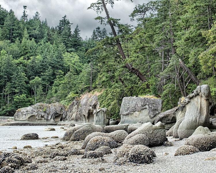 Rocks at Mud Bay