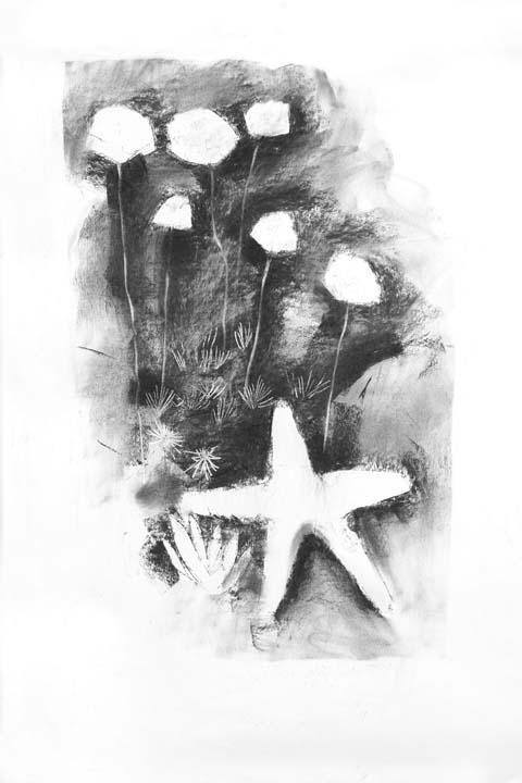 Thrift and starfish