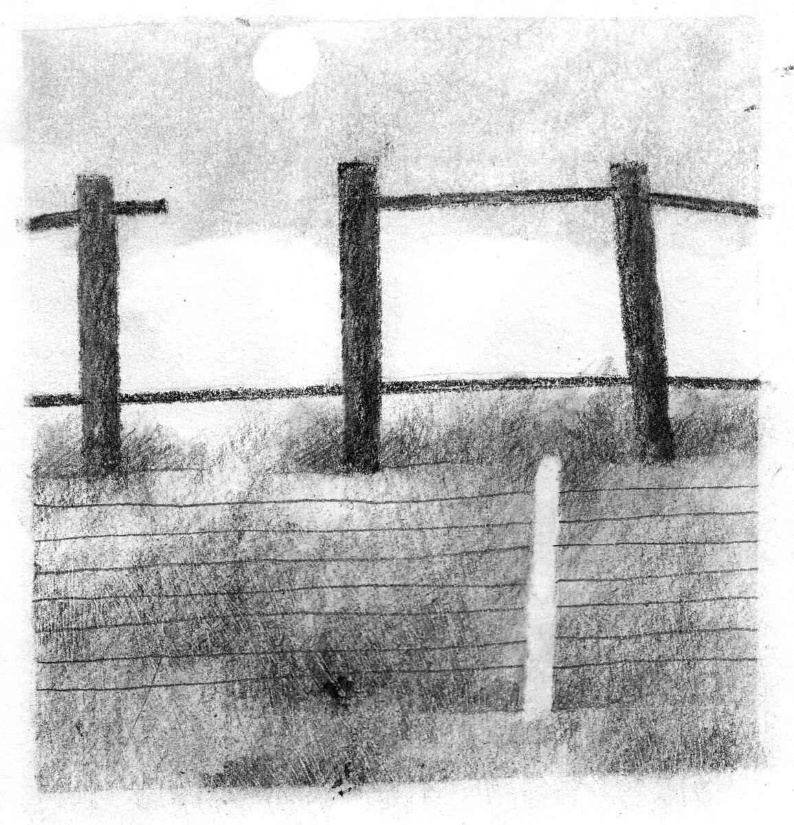 The old deer fence 2
