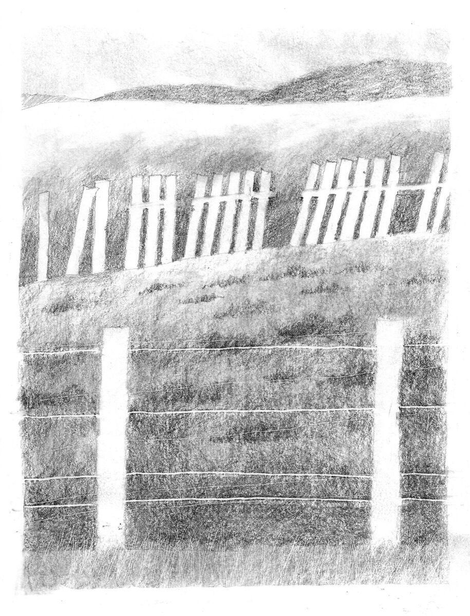 The old deer fence