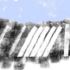 Forsinard fence