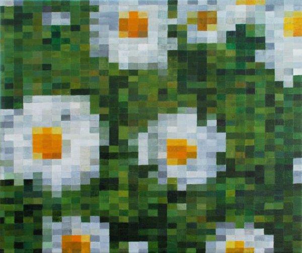 Wakehurst Daisys (Pixcels at the Bottom of the Garden)