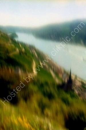 In the Rhine Valley by Lorchhausen