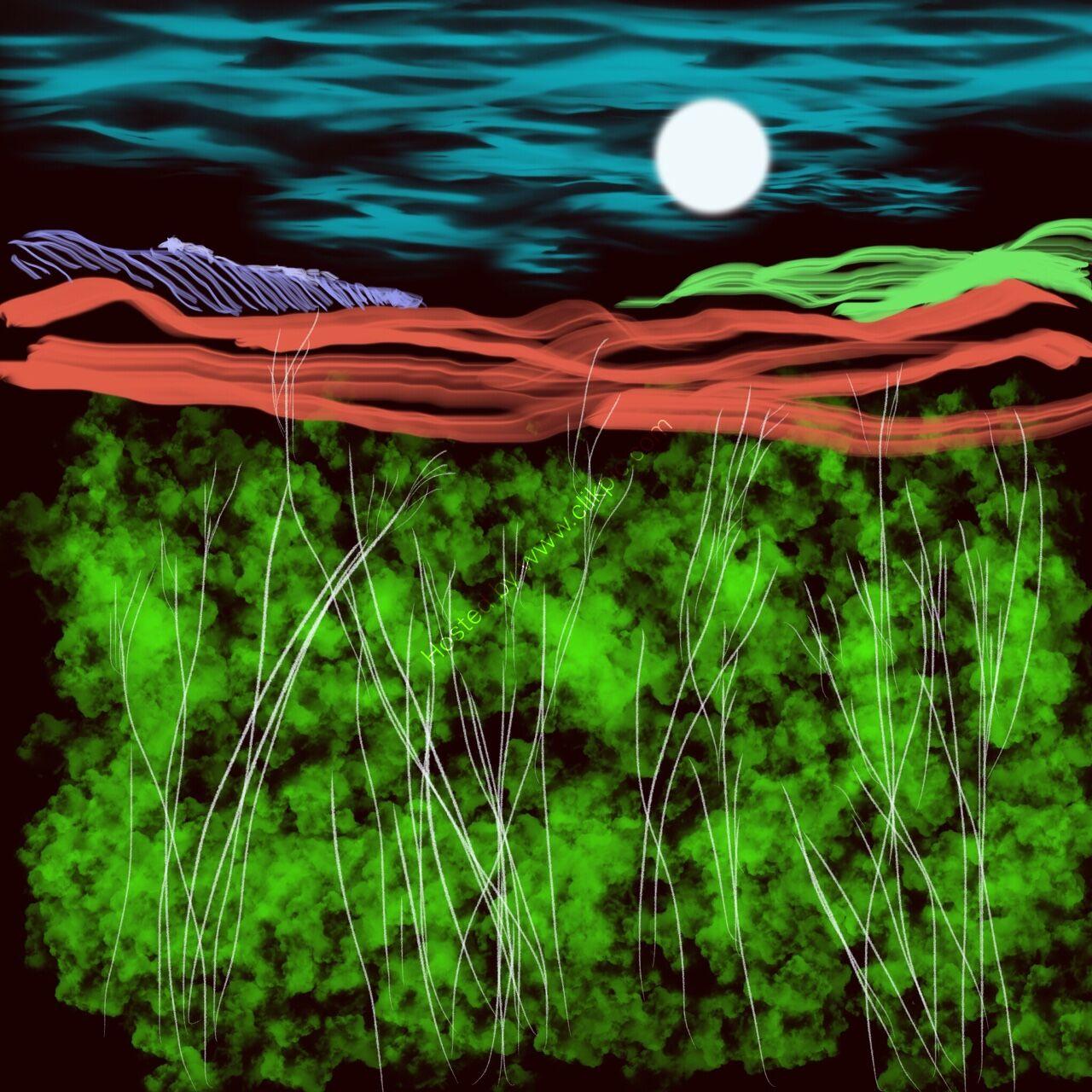 the marsh digital