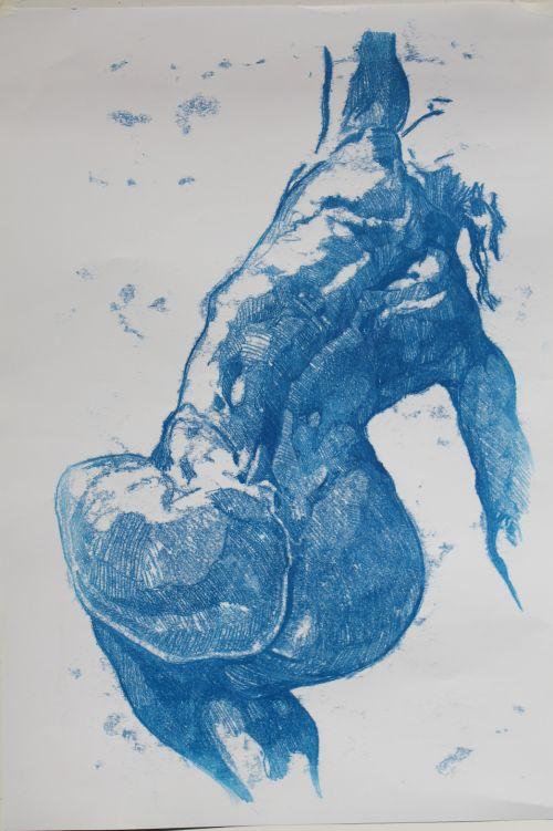 Blue Nude; mono 35.