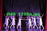D4S 1198a