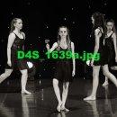 D4S 1639a