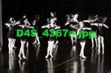 D4S 4367a
