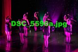 DSC 5596a