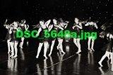 DSC 5648a