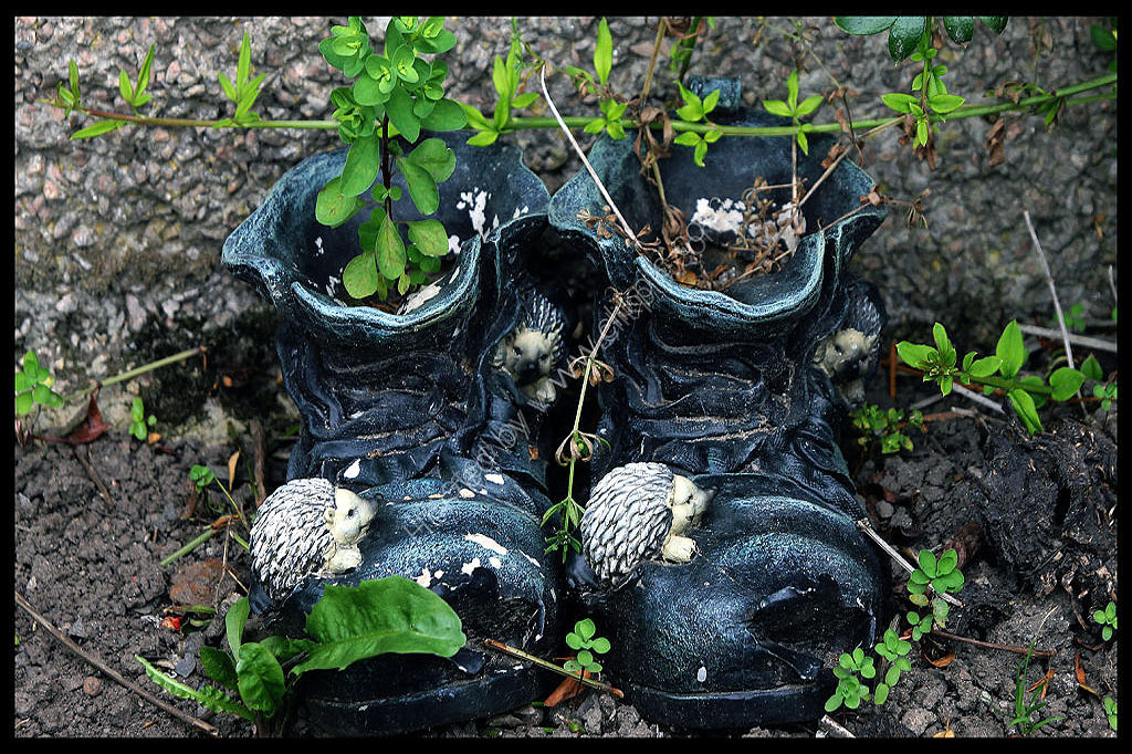 Just old boots