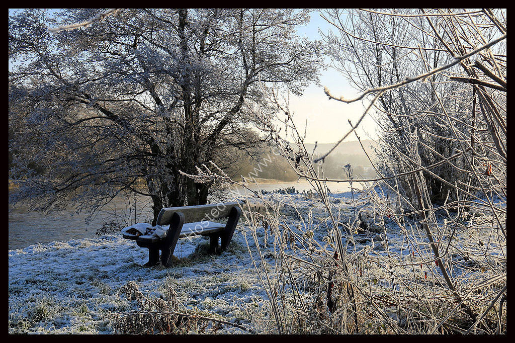 Frosty sceme by the River Tay Dec 2014