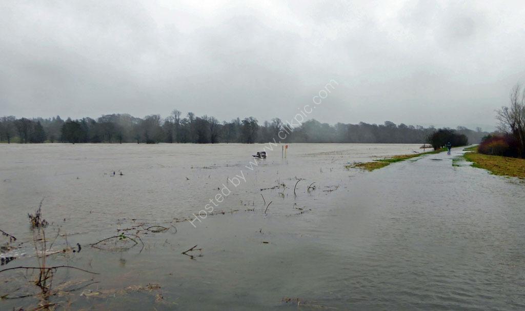 The River Tay January 2016