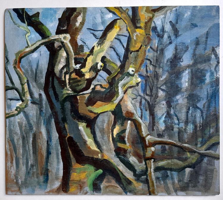Hilary Cartmel Oak in spinny