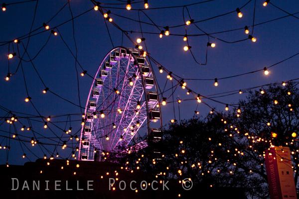 Brisbane Festival 2014