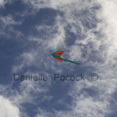 'Lets Go Fly a Kite' 2010