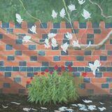 126-Magnolia and Wallflowers.JPG