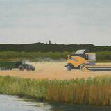 136-Warwickshire Wheat Harvest.JPG