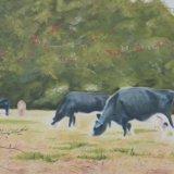 60-Baddesley Cows.JPG