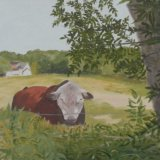 61-Baddesley Bull.JPG