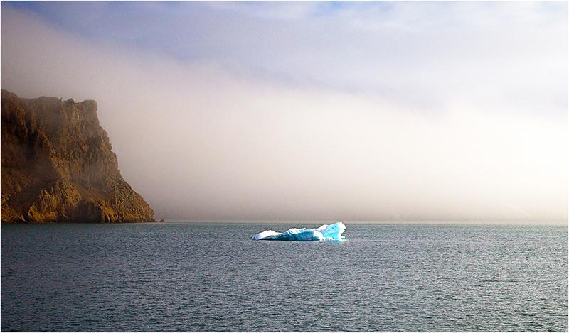 Orphan Iceberg