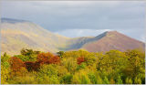 Ullock Pike and Skiddaw