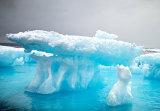 Arctic Wonderland
