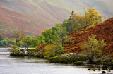Autumn on Ullswater