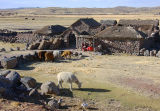 Farmstead near Sillustani
