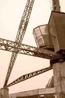 Crane in sepia