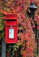 """""""Autumn Post"""""""