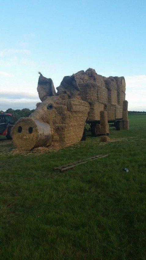 Pig Straw Bale Sculpture