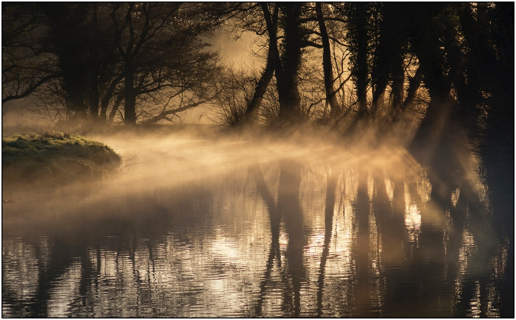 Light on the Wey
