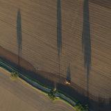 Farmland, Surrey