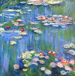 Chasing Monet - Waterlilies (1914-17)