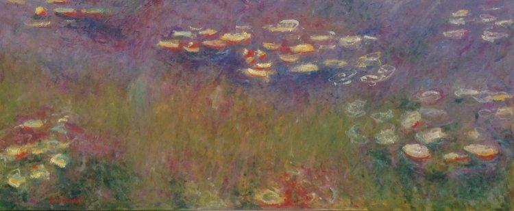 Chasing Monet - Agapanthus (1914-26)