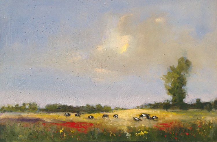 Cows and Poppies