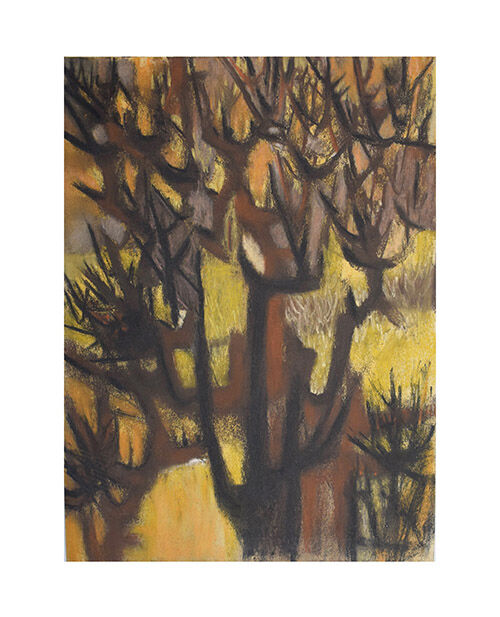 Study of trees with yellow.