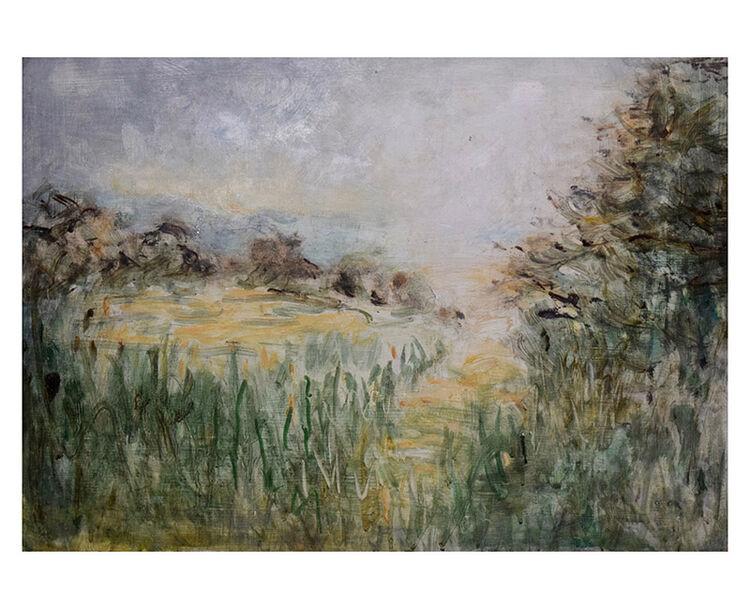 Path beside field