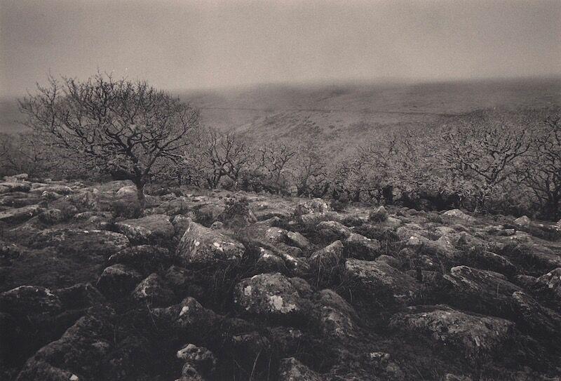 0044 landscape