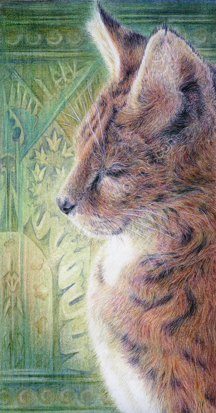 Bastet (Sacred Cat) - coloured pencil