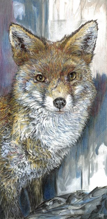 Brave Little Fox - coloured pencil