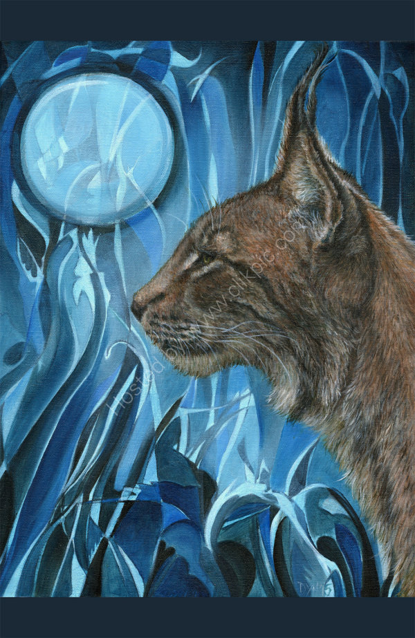 Dreams of a Lynx - oil