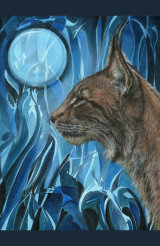 Dreams of a Lynx - £425 - oil on canvas