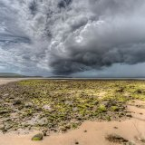 Summer Storm, Whiteford